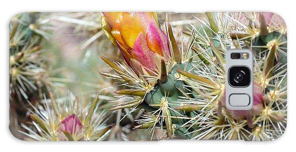 Cactus 17 Galaxy Case