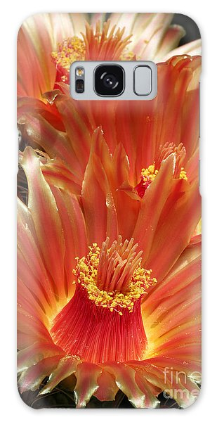 Cactus Blossoms Galaxy Case
