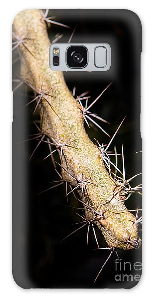 Cactus Branch Galaxy Case