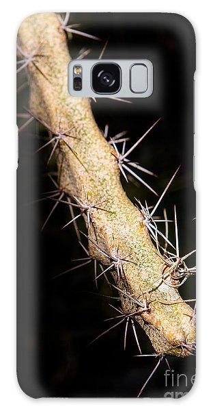 Cactus Branch Galaxy Case