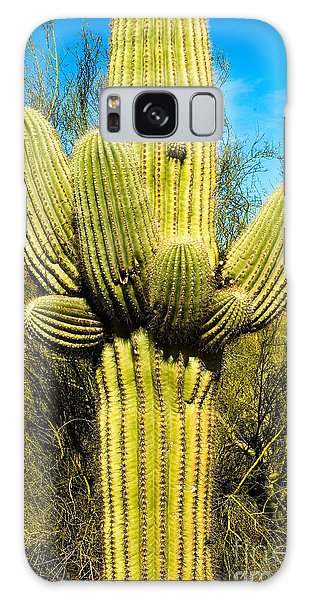 Galaxy Case featuring the photograph Cactus Face by Mae Wertz