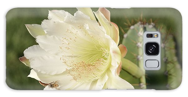Cactus Flower And Bee Galaxy Case