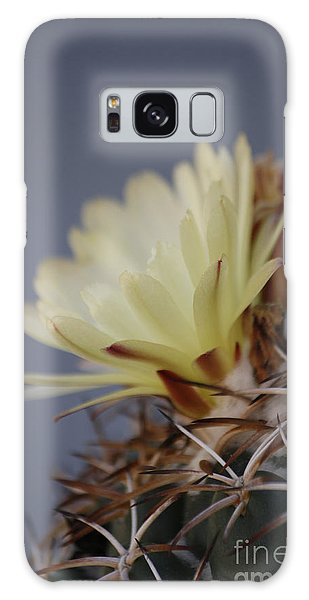 Cactus Flower Galaxy Case by Anne Rodkin