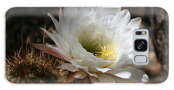 Cactus Flower Full Bloom Galaxy Case by Tom Janca