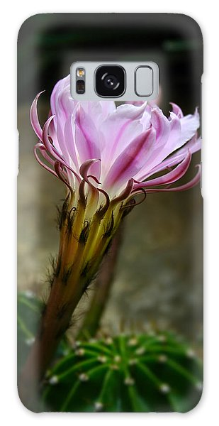 Cactus Flower Galaxy Case by Ron Grafe