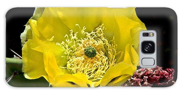 Cactus Flower Galaxy Case by Sherry Davis