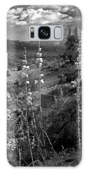 Cactus Flowers And Courthouse Bluff Bw Galaxy Case