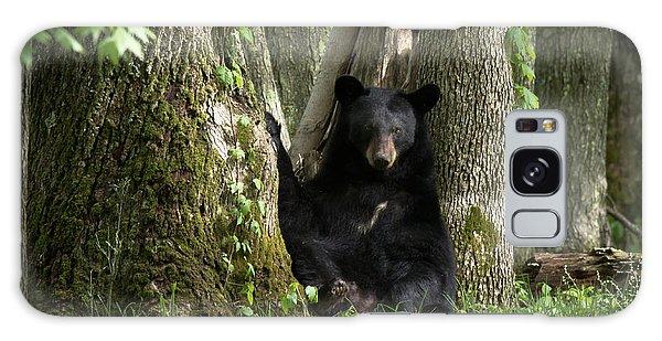 Cades Cove Bear Galaxy Case
