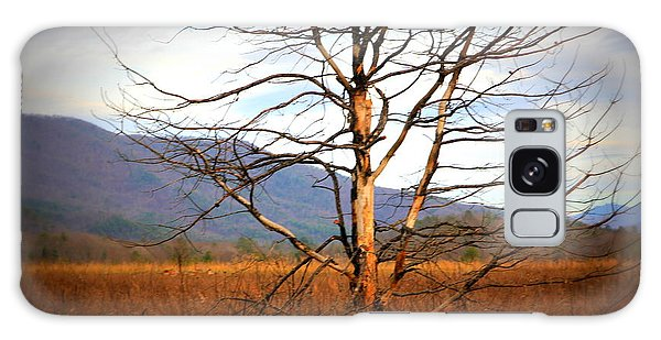Cades Cove Pasture Galaxy Case