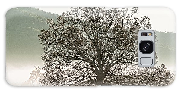 Cades Cove Tree Galaxy Case by Phyllis Peterson
