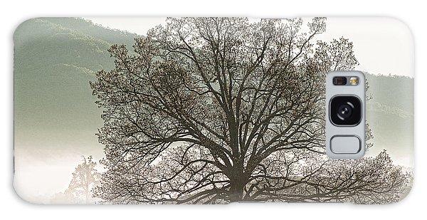 Cades Cove Tree Galaxy Case