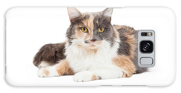 Calico Domestic Longhair Cat Laying Galaxy Case