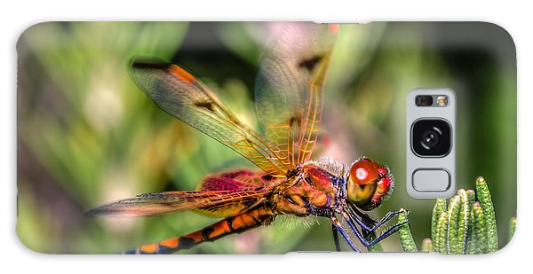 Calico Pennant Galaxy Case by Rob Sellers