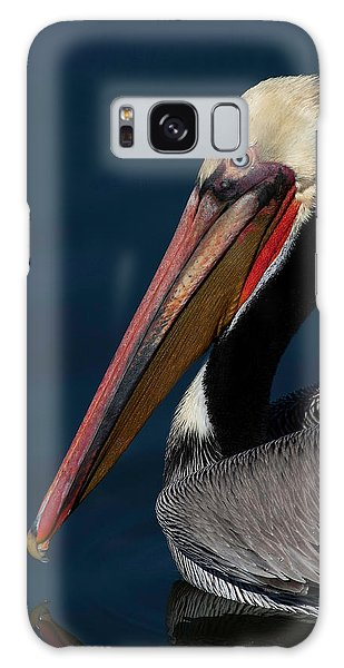 California Brown Pelican Portrait Galaxy Case by Ram Vasudev