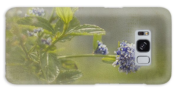 California Lilac Galaxy Case by Clare Bambers