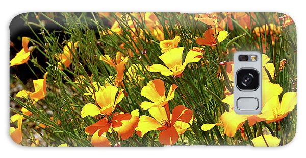 California Poppies Galaxy Case