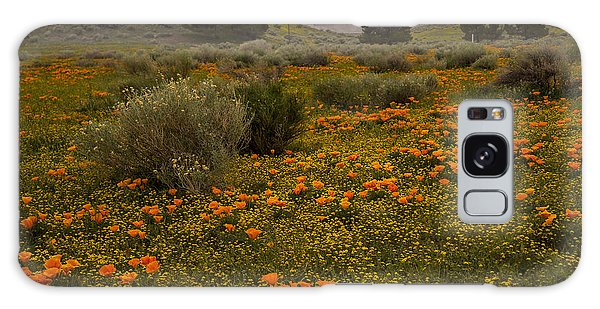 California Poppies In The Antelope Valley Galaxy Case
