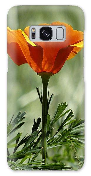 California Poppy Galaxy Case