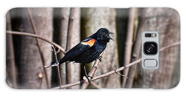 Call Of The Red Winged Blackbird Galaxy Case