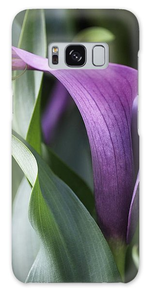 Calla Lily In Purple Ombre Galaxy Case