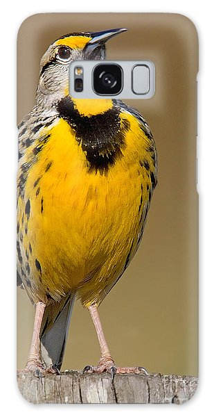 Calling Eastern Meadowlark Galaxy Case by Jerry Fornarotto