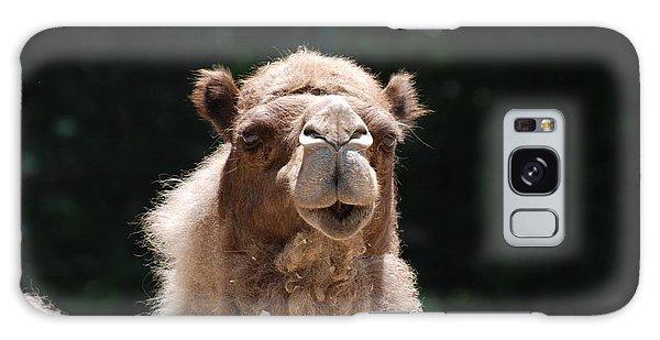 Camel Galaxy Case by DejaVu Designs
