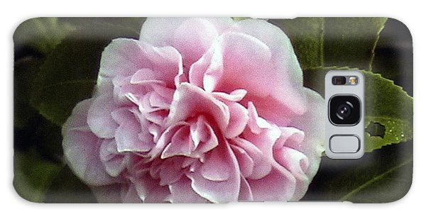 Camellia In Rain Galaxy Case by Patrick Morgan