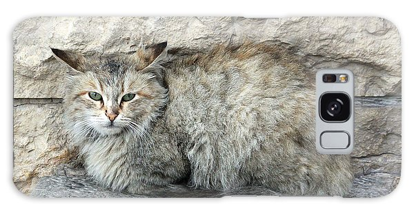 Camo Cat Galaxy Case