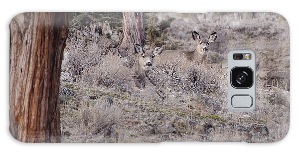 Camouflaged Deer  Galaxy Case by Linda Larson
