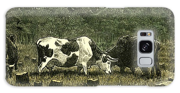 Pasture Galaxy Case - Canada Farm Life Cattle Grazing In Newly Cleared Pasture by Canadian School