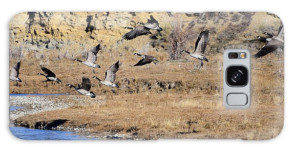 Canada Geese Along The Green River Galaxy Case