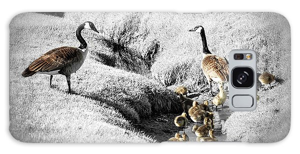 Canada Geese Family Galaxy Case by Elena Elisseeva