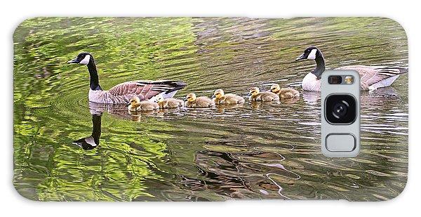 Canada Geese Family Galaxy Case