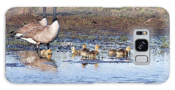 Canada Goose Family Galaxy Case