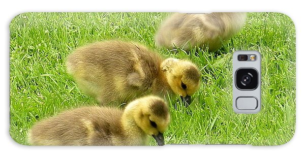 Canada Goose Goslings Galaxy Case by Brian Chase