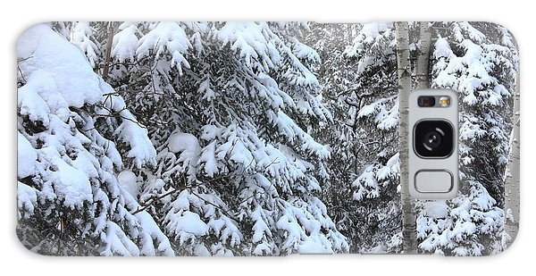 Canadian Forest - Winter Snowfall Galaxy Case