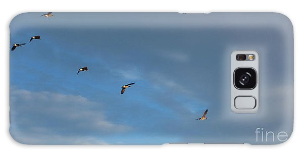 Canadian Geese 1 Of 3 Galaxy Case