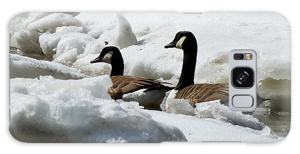 Galaxy Case featuring the photograph Canadian Geese Icebreakers by Kristen Fox