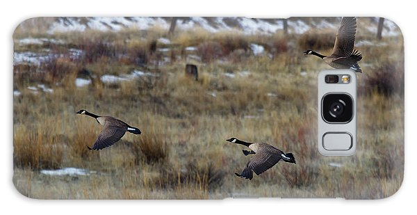 Goose Galaxy Case - Canadian Geese In Flight by Mike  Dawson