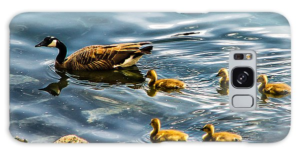 Gosling Galaxy Case - Canadian Goose And Goslings by Robert Bales
