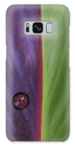 Plants Galaxy Case - Canna by Stephen Clough
