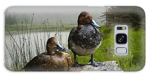 Canvasback Duck Pair By A Pond Galaxy Case