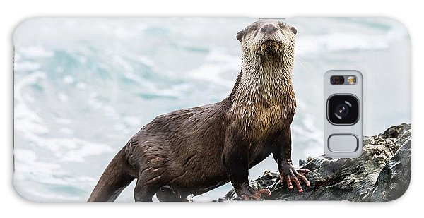 River Otter Galaxy Case - Cape Clawless Otter by Peter Chadwick