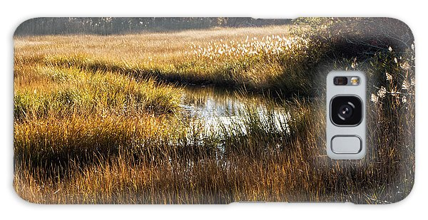 Cape Cod Marsh Galaxy Case