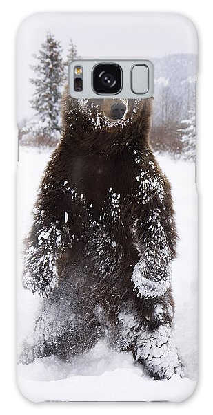 Captive Grizzly Stands On Hind Feet Galaxy Case