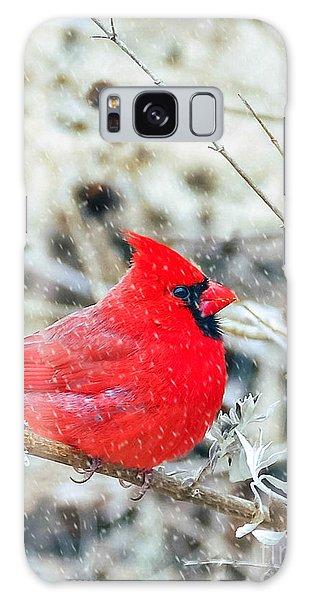 Cardinal Bird Christmas Card Galaxy Case