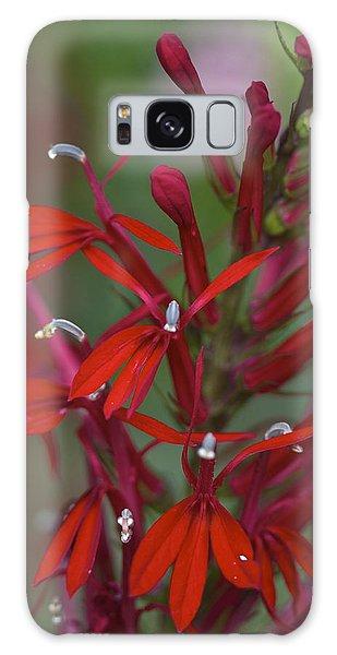 Cardinal Flower Galaxy Case