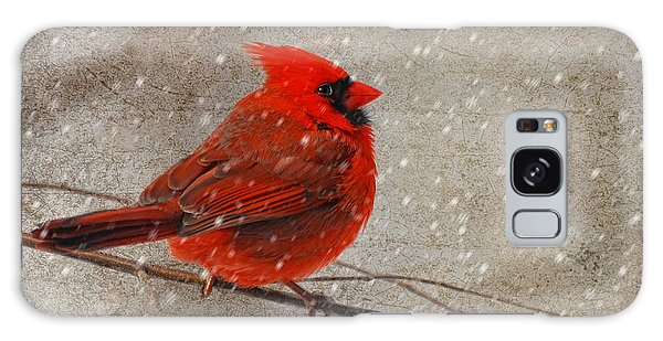 Cardinal In Snow Galaxy Case