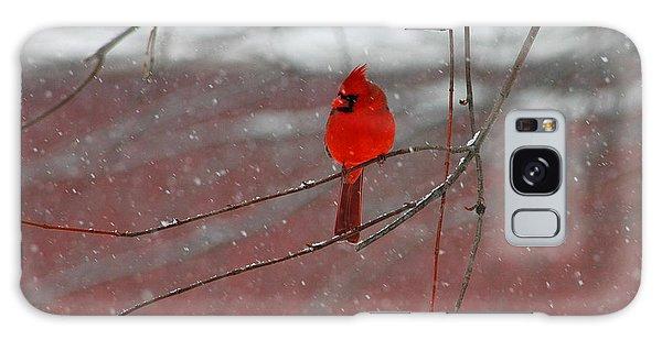 Cardinal In Winter Galaxy Case by Olivia Hardwicke