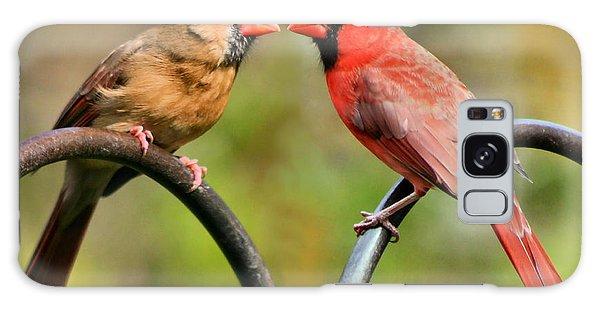 Cardinal Love Galaxy Case